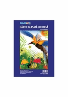 Hartie glasata lucioasa 238x338 COLORARTE 10 coli/set